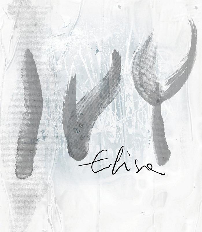 elisa ivy copertina cd dvd