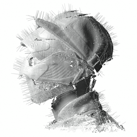 woodkid the golden age copertina disco