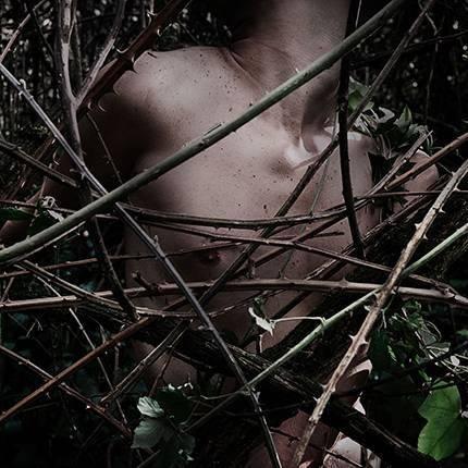 canzoni contro la natura cd cover artwork