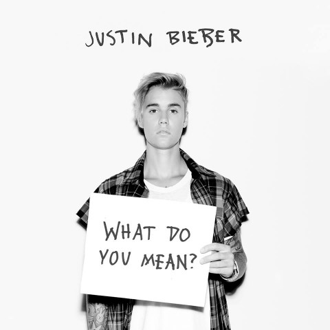 Justin Bieber What Do You Mean artwork