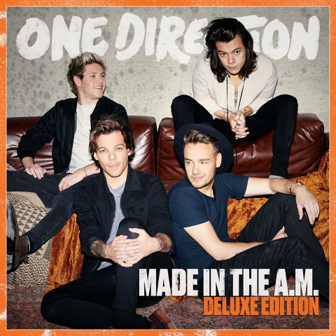 One Direction made in the am album cover