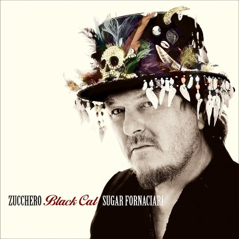 Zucchero Black Cat album cover