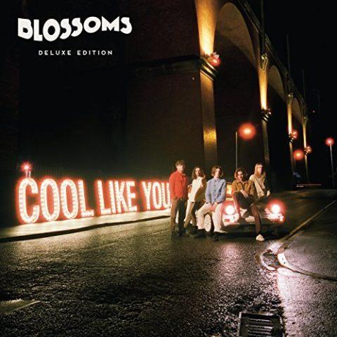 Blossom Cool Like You album 2018 cover
