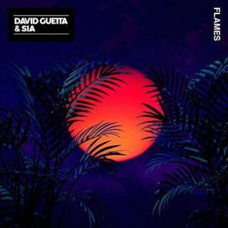 David Guetta and Sia Flames