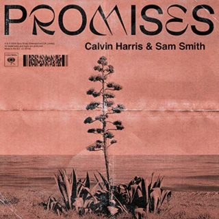 Promises - Calvin Harris Sam Smith cover