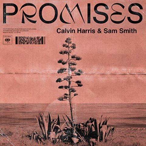 Promises - Calvin Harris Sam Smith cover