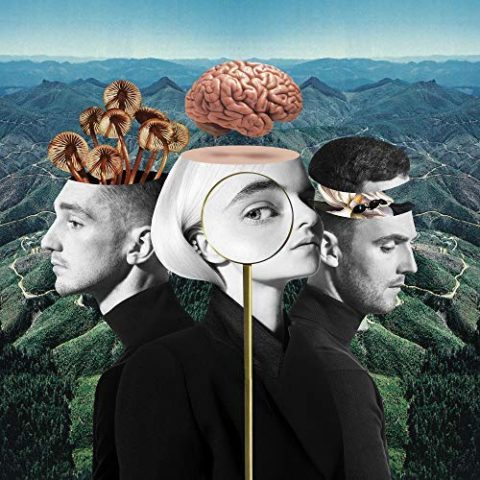 What Is Love Clean Bandit album cover