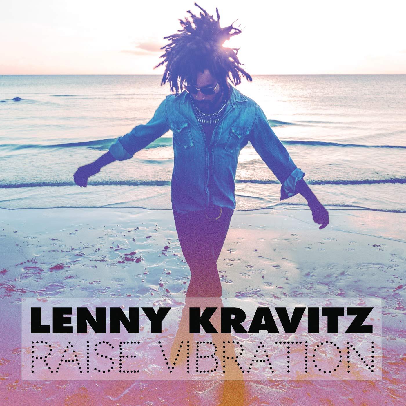 Lenny Kravitz Rise Vibration album cover