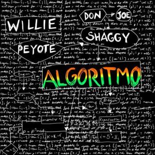 Algoritmo by Willie Peyote ft Shaggy - Testo e Traduzione