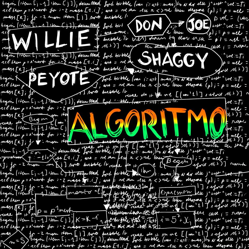 Algoritmo by Willie Peyote ft Shaggy - Testo e Traduzione