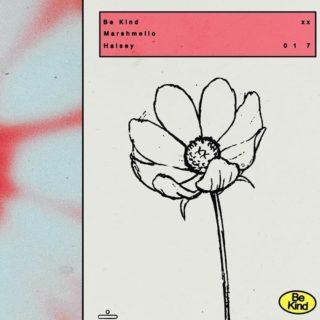 Be Kind - Marshmello & Halsey - Con Testo e Traduzione